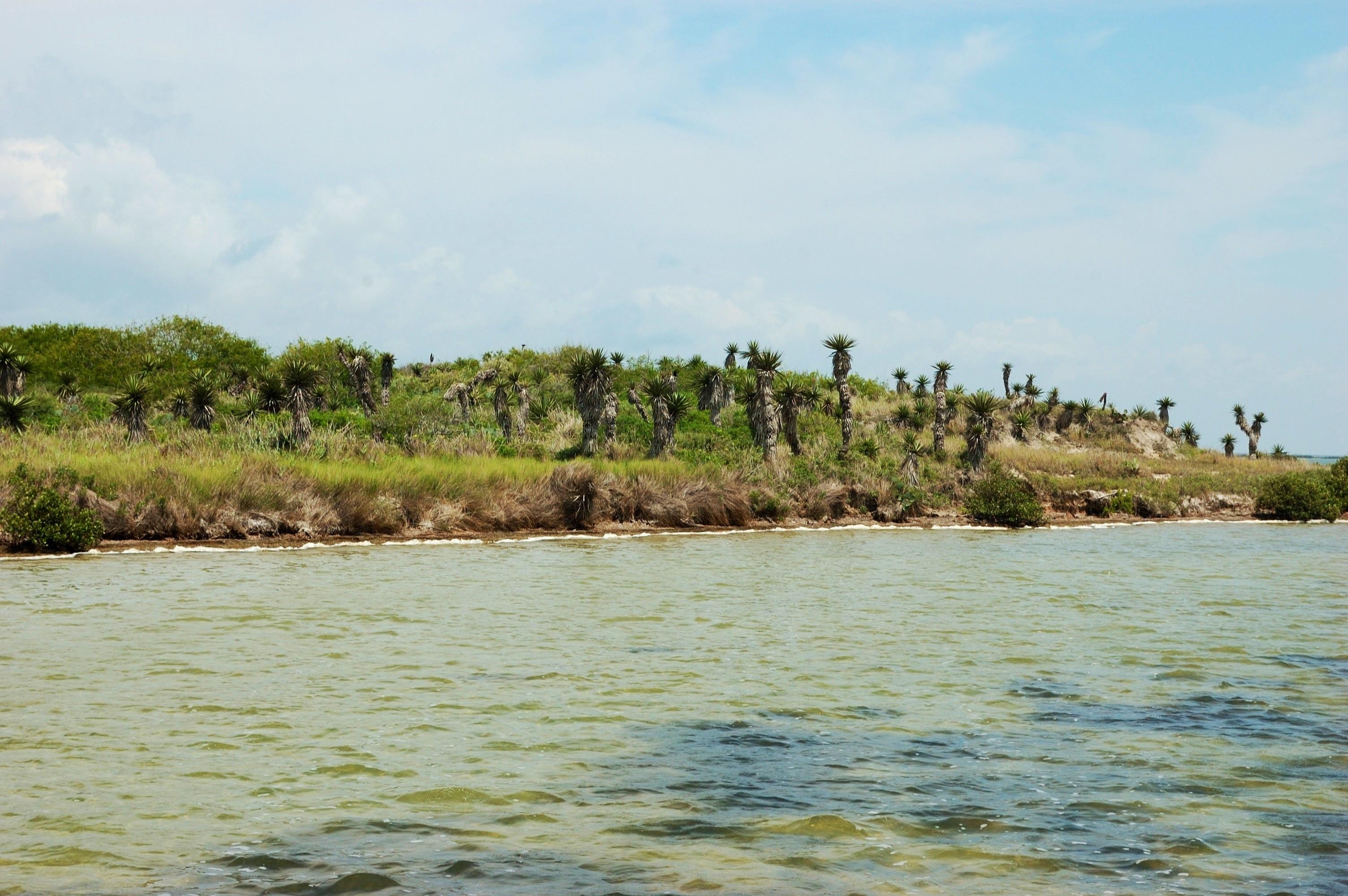 Photos arroyo colorado for Arroyo city fishing lodge